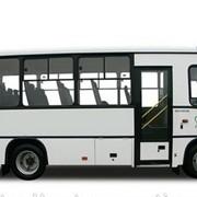 Автобус ПАЗ-320302 фото