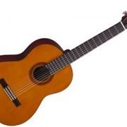 Гитары, Классические гитары, Гитара Yamaha C40 фото