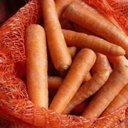 Морковь свежая, Днипро А Агро, ООО,Украина фото