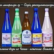 Лечение более 100 заболеваний с помощью лечебной минеральной воды из Чехии фото