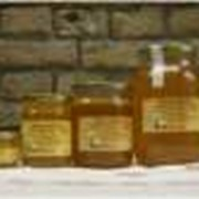 Мед из липы фото