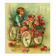 Международня доставка цветов фото