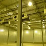 Система холодоснабжения в овощехранилище фото