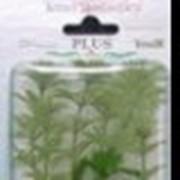 Искусственные растения фото