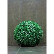 Самшит шар искусственный D-25 см (без кашпо) фото