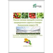 Исследование рынка промышленных овощных теплиц на Северном Кавказе РФ фото