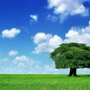 Проекты эколого-экономического обоснования севооборотов фото