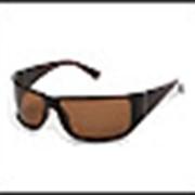 Коллекция солнцезащитных очков LEGNA.