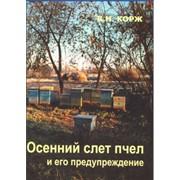 Корж В.Н. Осенний слет пчел и его предупреждение фото