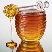 Натуральный мед с пасеки фото