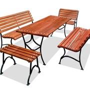 Комплект мебели Элегант-2 фото