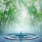 Вода питьевая, Вода, Насосы, Диспенсер. фото