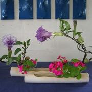 Искусство икебаны. фото