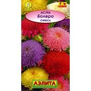 Семена цветов Астра Болеро, смесь л/п фото