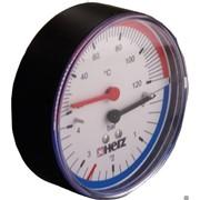 Термоманометр 20…120гр.С 0…4 бара Herz фото