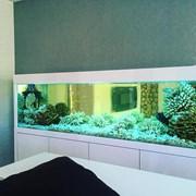 Сервисное обслуживание аквариума фото