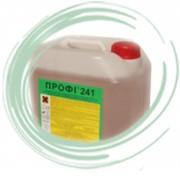 Профи 241 Слабощелочной пенный концентрат с антибактериальным эффектом фото