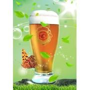 "Пиво ""Grand Gold"" фото"