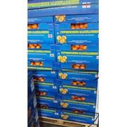 Грузинские мандарини фото