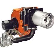 Горелки газовые и автоматика фото