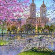 Картина по номерам Весна в парке. Нью-Йорк фото