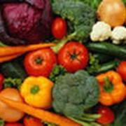 Предлагаем овощи фото