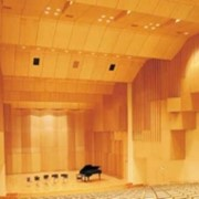 Акустические стеновые и потолочные панели из березы фото