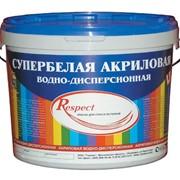 Краски акриловые RESPECT Супербелая фото