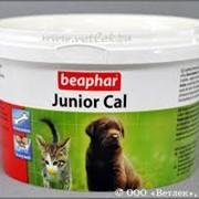 Минеральная добавка Junior Cal фото