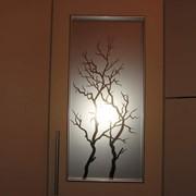 Пленки ударопрочные, зеркальные, матовые для стекол фото