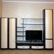 Набор мебели Дебют шир 2.78 фото