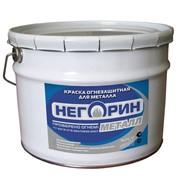 Огнезащитная краска для металла НЕГОРИН-Металл фото