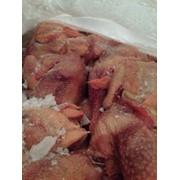 Курица Суповая фото