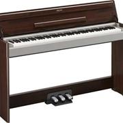 Цифровое пианино Yamaha Arius YDP-S31 фото