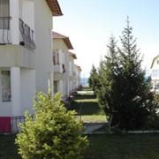 Пансионат Ак-Данис в курортной зоне Булан - Соготту на северном берегу озера Иссык-Куль фото