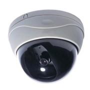 Купольные камеры D102 фото
