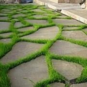 Песчаник серо-зеленый фото