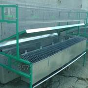Клетка для кроликов КМОП-2 пристеночная маточная откормочная двухэтажная фото