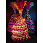 Бразильский костюм для танца, карнавала, корпоратива фото