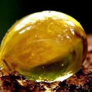 Янтарная кислота фото