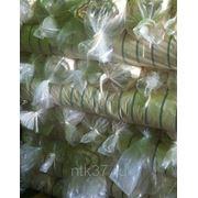 Тик матрацный суровый с просновкой ш. 160 см 100 % х/б 165 г/м.кв. фото