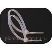 Стяжки нейлоновые КСС 4*370 (белый) фото