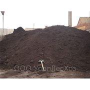 Земля Чернозем с доставкой фото