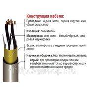 Инструментальный кабель RE-2X(St)Н многопарный фото