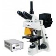 Микроскоп люминесцентный Микромед 3 ЛЮМ фото