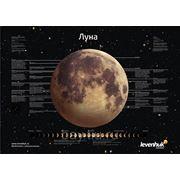 Levenhuk (Левенгук) Постер Levenhuk «Луна» фото