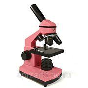 Микроскоп Levenhuk Rainbow 2L NG Rose\Роза фото