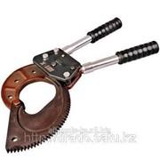 Ножницы секторные НС-100БС Шток Код: 05009 фото