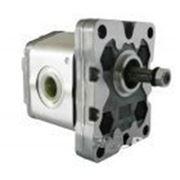 Шестеренный насос 1P D 2,5 GAS фото