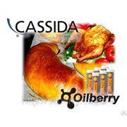 Cassida XTS Пищевая пластичная высокотемпературная смазка NSF-1 t.max +270С